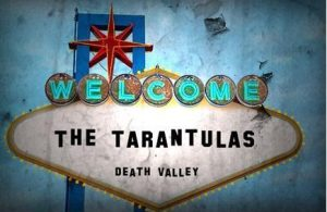 The Tarantulas T-Bucket instrumental